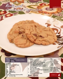 Gastronomy | Really good chocolate-chip cookies